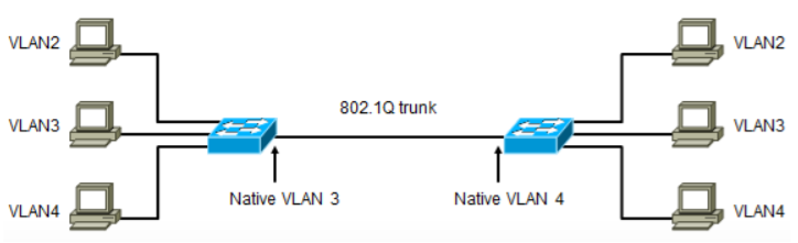 trunk4.png